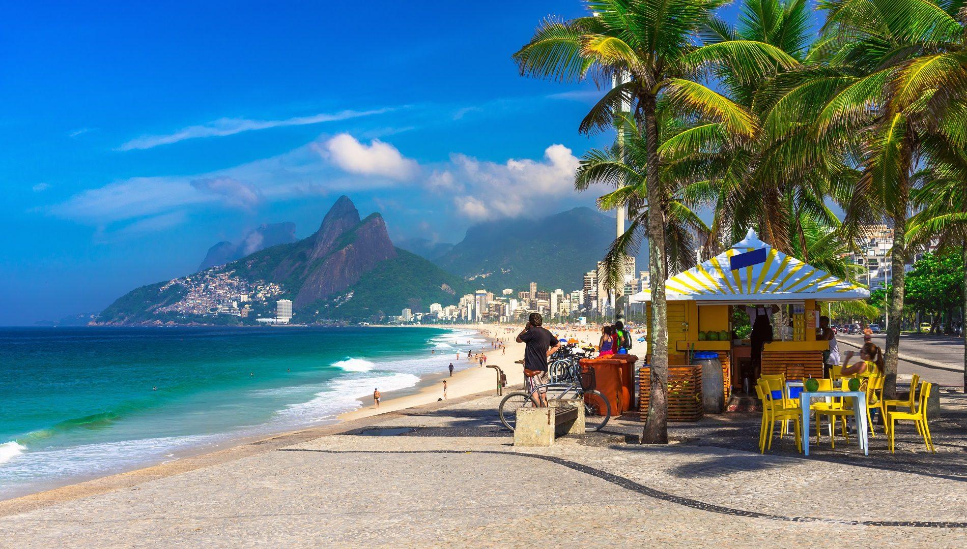 personas frente a una playa y debajo de unas palmeras